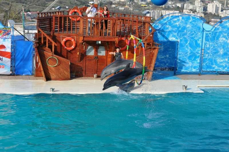 Дельфинарий в Ялте Акватория