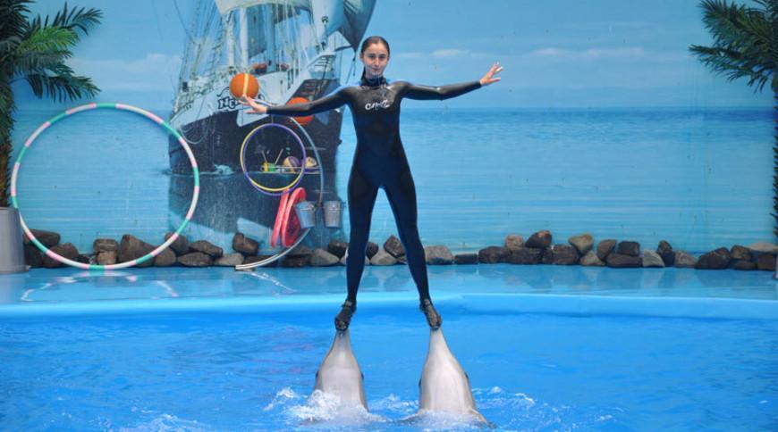 Немо, дельфинарий в Алуште