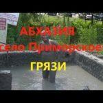 Все горячие источники Абхазии (с указанием времени работы и стоимости, и как посетить)