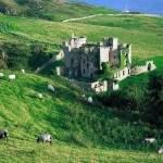 Какая виза в Ирландию вам потребуется?