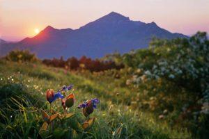 Отдых в Кавказских минеральных водах: климат и курорты