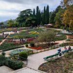 Экскурсия в вечнозеленый крымский рай — Никитский ботанический сад